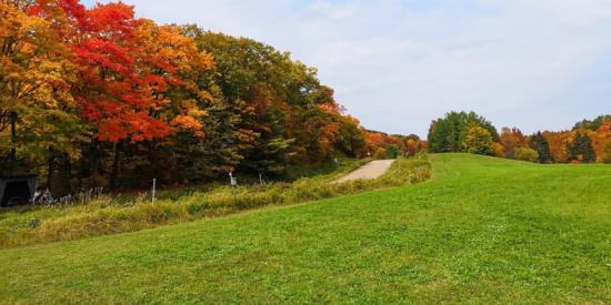 Todo tipo de aventuras para decir Bonjour Québec en otoño