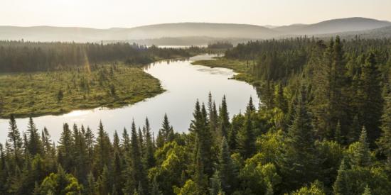 Venta en línea de la Tarjeta Anual de Parques Nacionales Edición Bonjour Québec